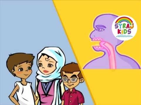 Der Körper - Arabische Vokabeln