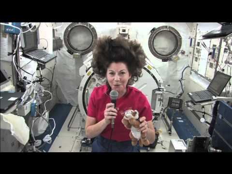 space station Waking up, working, and going to sleep in Zero G