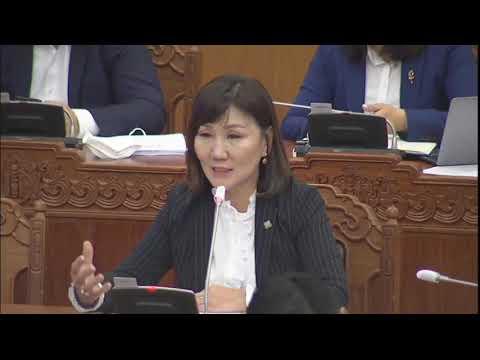 М.Оюунчимэг: Хүний эрхийг бүх түвшинд хамгаалахад хууль эрх зүй, ажиллах орчин, биеэ даах чадвар бий юу?
