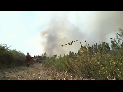 Πορτογαλία: Κατέπεσε πυροσβεστικό αεροσκάφος