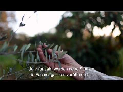 Earth's Best: Olivenblatt