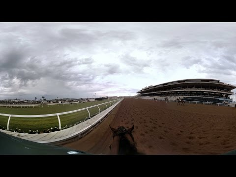 360-degree GoPro video shows what it's like to ride prizewinning racehorse