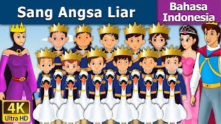 Video Sang Angsa Liar | Dongeng anak | Kartun anak | Dongeng Bahasa Indonesia MP3, 3GP, MP4, WEBM, AVI, FLV Januari 2019