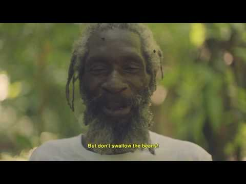 Hitimpulse - I'm In Love With The Coco Video