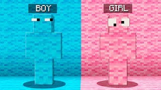 Video Boy vs Girl Minecraft Hide and Seek Challenge! MP3, 3GP, MP4, WEBM, AVI, FLV Maret 2019