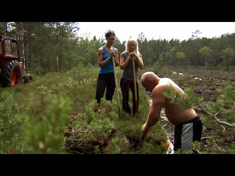 Sebastian bryter torv med tjejerna - Bonde söker fru (TV4)