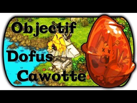 comment avoir un dofus cawotte