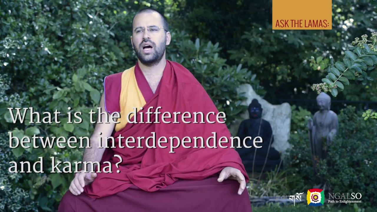 What is the difference between interdependence and karma?