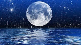 8 Hour Sleeping Music, Calming Music, Music for Stress Relief, Relaxation Music, Sleep Music, ☯3231