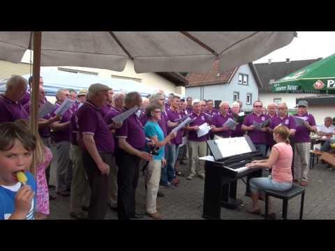 Dahner Felsenland Hoffest des MGV Waldeslust in Bruchweiler-Bärenbach 15.6.2014 T8