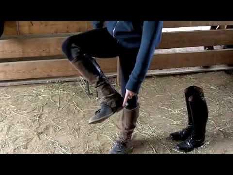 Horse Riding Gear