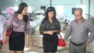 Chăn drap gối nệm Thế Linh ( Chương trình Tài chính Doanh nghiệp )
