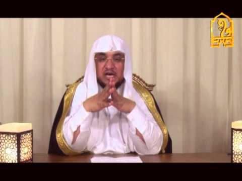 فتنة معركة الجمل وسبب خروج عائشة  - الشيخ د علي الربيعي  ج 2