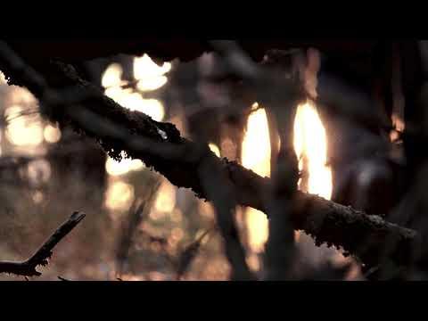 VAK - Loud Wind (Official Music Video)
