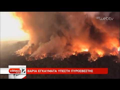 Δίχως τέλος η καταστροφή από τις πυρκαγιές στην Αυστραλία   12/01/2020   ΕΡΤ