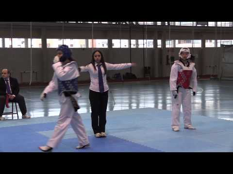 Taekwondo Campeonato Navarro Sénior de Combate (2)