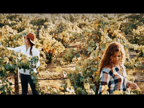 Sisters build winery after discovering each other