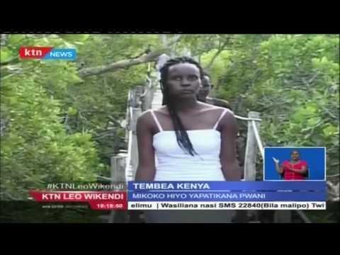 Tembea Kenya: Ndege ambao hutoka Bara Uropa kuja  Kenya kutaga mayai