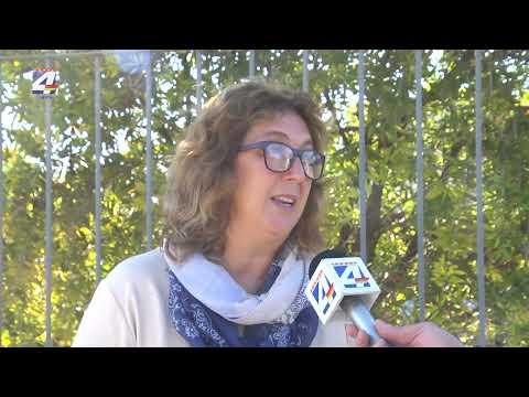 "Diputada Bottino: Denuncias del anterior Director Nacional de Turismo ""están comprobadas"""