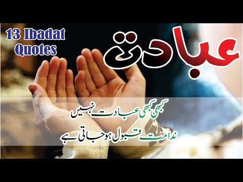 Short quotes - Ibadat 13 best quotes in hindi urdu with voice and images  Aqwal e zareen Ibadat