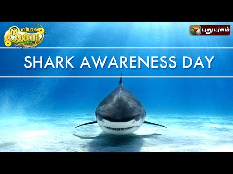 Shark-Awareness-Day-in-Iniyavai-Indru--14-07-2016-I-Puthuyugam-TV