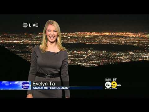 Evelyn Taft 2012/01/13 KCAL9 HD; Grey dress, pantyhose