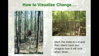 Natural Use Areas - Considerations and Tools