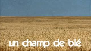 फ्रेंच सबक # 1 time lapse # un champ de blé