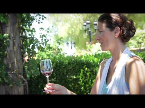 South Coast Winery Resort & Spa   Yoga & Wine Tasting   Live Love Spa