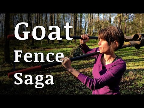 The Goat Fence Saga