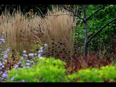 Savill Gardens, Windsor Great Park