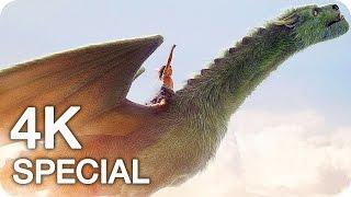 Nonton Pete S Dragon Clips  Featurettes   Trailer  2016  Film Subtitle Indonesia Streaming Movie Download