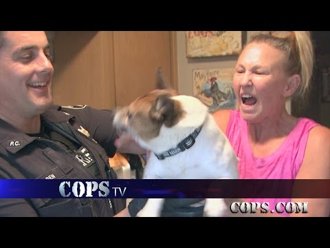 Rascal the Toy Fox Terrier, Deputy Derek Nielsen, COPS TV SHOW
