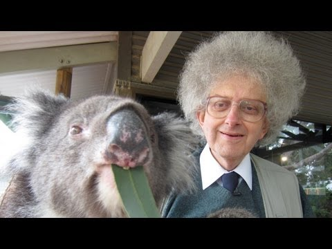 Koala Bears and Eucalyptus - Periodic Table of Videos