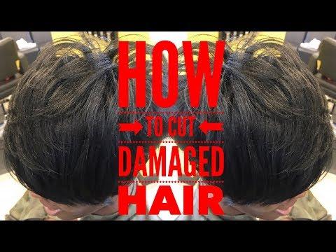 Hair cutting - JUST CUT DAMAGED HAIR! HOW TO MAKE DAMAGE HAIR HEALTHIER