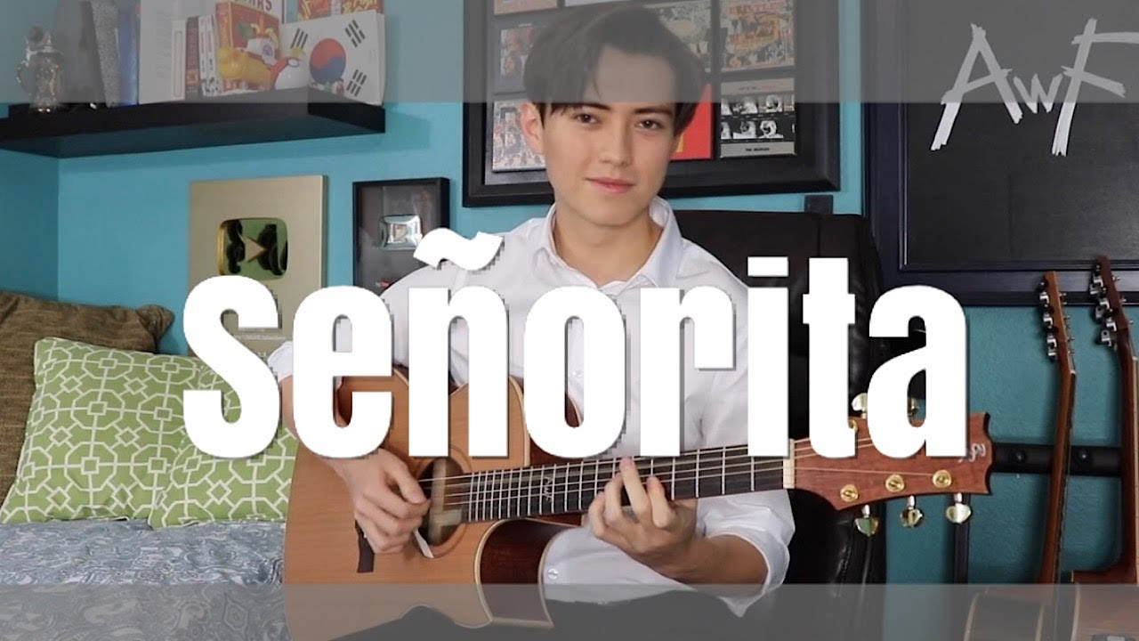 Señorita – Shawn Mendes, Camila Cabello – Cover (fingerstyle guitar) Andrew Foy