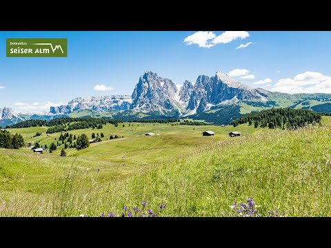Estate all'Alpe di Siusi (3 min)