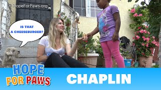 A young girl donates her cheeseburger to help us save a homeless dog. by Hope For Paws