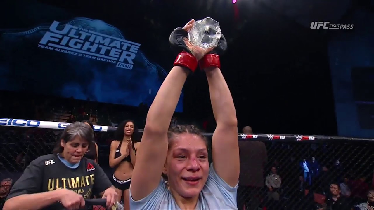 The Ultimate Fighter Finale: Nicco Montano and Roxanne Modafferi Octagon Interviews