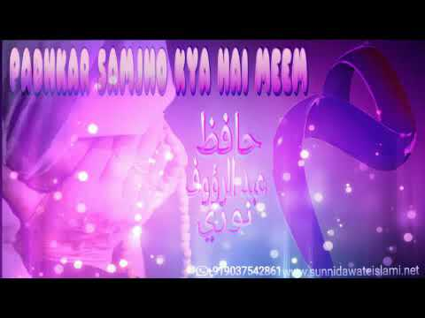 Video Meem Se Maa Ka Daman Mila Hai   Very Emotional   Hafiz Abdur Rauf Noori download in MP3, 3GP, MP4, WEBM, AVI, FLV January 2017