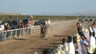 Clint (TX) United States  City new picture : clint texas horse racing