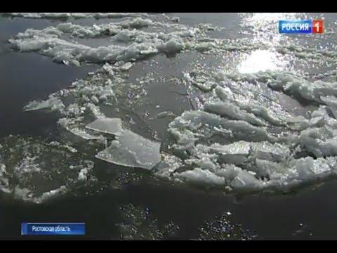 Ученые назвали причину осолонения реки Дон (видео)