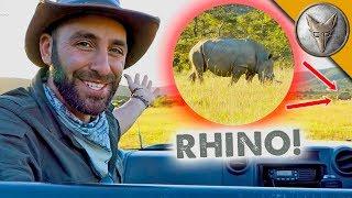 Ultimate Safari Adventure! by Brave Wilderness
