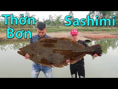 Hữu Bộ | Ăn Sống Cá Thờn Bơn | Sashimi Cá Bơn - Thời lượng: 20 phút.