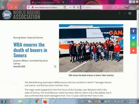 HORRIBLE NEWS!!7 BOXERS DIE WITH TRAINER & BUS DRIVER!!!
