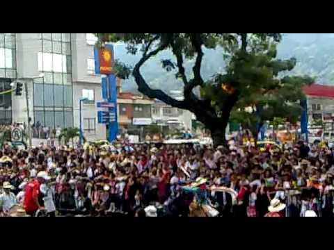 Desfile reinado nacional del folclor.