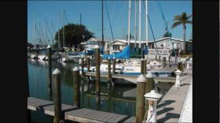 Venice (FL) United States  city images : An Introduction to Harbor Lights Cooperative, Inc.- Venice, Florida, USA
