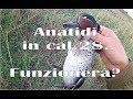 CACCIA: Anatidi in calibro 28