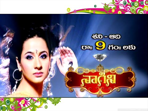 Naagini TV Serial on Vanitha TV