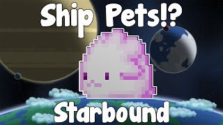All pets - https://www.youtube.com/watch?v=s1N9npLMFM0 Hello everyone and welcome back to Starbound! This time we'll be...